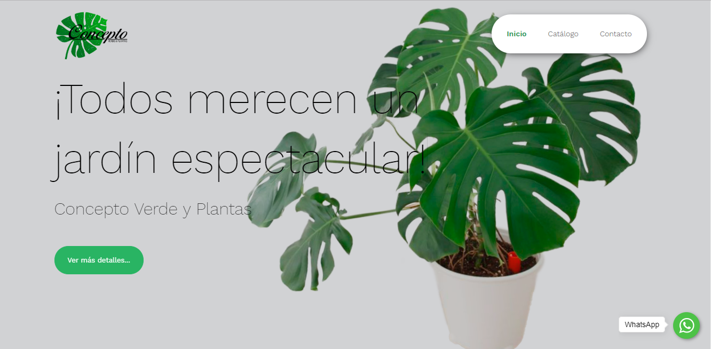 Imagen Concepto Verde y Plantas